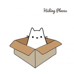 Cats love hiding places